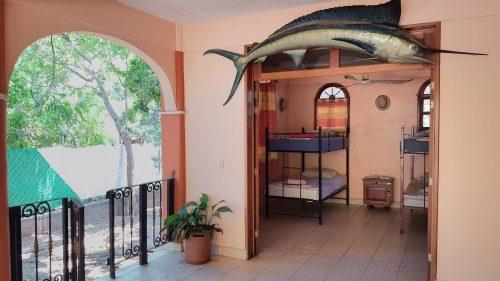 Villa Mango Puerto Escondido Ataulfo mixed dorm room3